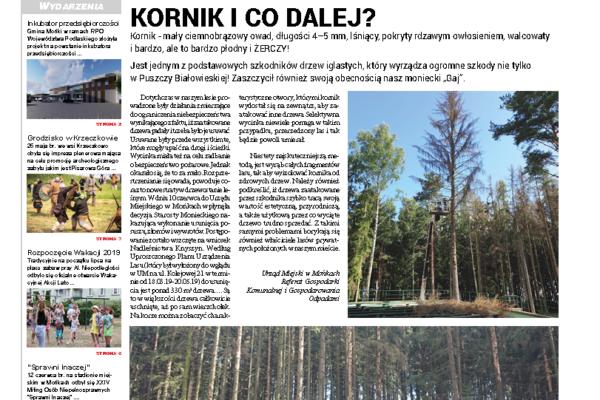 Okładka gazety Wieści Monieckie 3/2019 (60)